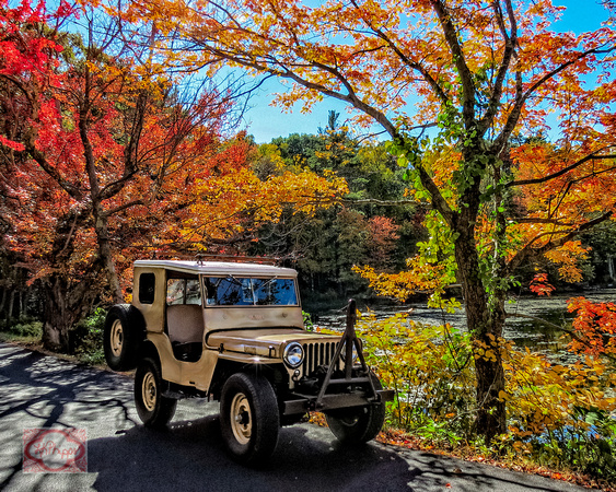Jeep Willy 1946 11/27